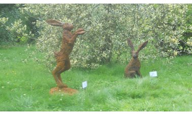 We liked the sculptures at Spetchley ParK Gardens - Photographer Jane Driver