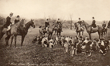 1920s Meeting of the Pytchley Hounds